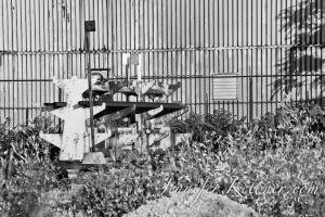 Industrial-10.jpg
