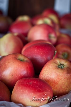 apples (4 of 18).jpg